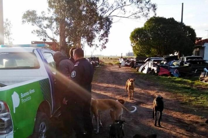 Desbaratan un desarmadero ilegal de autos en Miramar